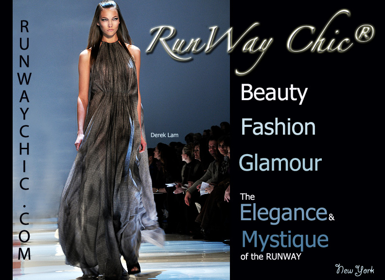 Runway Chic Cover Image
